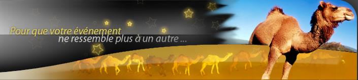ombregauche_alt_location dromadaire tg_location dromadaire td_location dromadaire - Location De Chameau Pour Mariage